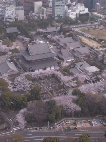 増上寺、東京タワー展望台より