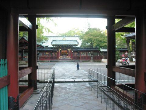 根津神社、遠くから望む