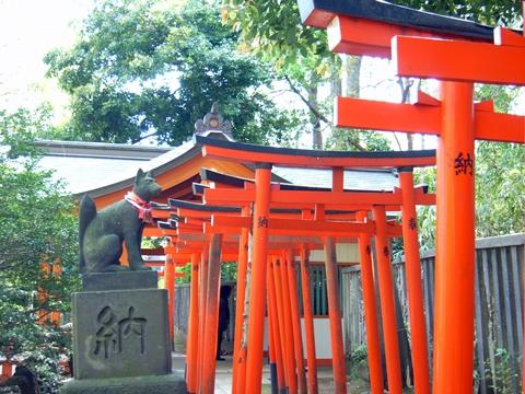 根津神社、乙女稲荷