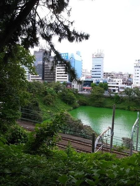 市ヶ谷-飯田橋間、夏の外堀の様子